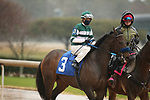 February 6, 2021: Flagstaff (3) with jockey Florent Geroux aboard before the running of the King Cotton Stakes at Oaklawn Racing Casino Resort in Hot Springs, Arkansas on February 6, 2021. Justin Manning/Eclipse Sportswire/CSM