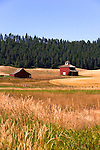 Palouse Hills, Washington, known as the heart of wheat farming in the United States is also famous for its rolling scenery.  This farm landscape is at the base of Kamiak Butte, a Whitman County Park offering camping, picknicking, hiking, and incredible views of both Idaho and Washington Palouse country.  Palouse Scenic Byway.