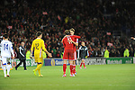 UEFA European Championship at Cardiff City Stadium - Wales v Cyprus :  Gareth celebrates with David Edwards at the final whistle after Wales beat Cyprus 2-1.