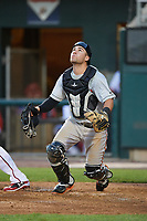 Bowie Baysox catcher Austin Wynns (19) during a game against the Harrisburg Senators on May 16, 2017 at FNB Field in Harrisburg, Pennsylvania.  Bowie defeated Harrisburg 6-4.  (Mike Janes/Four Seam Images)