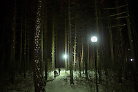 People walk among trees in a forest park in Ufa, Bashkortostan, Russia.
