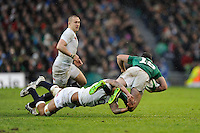 during the RBS 6 Nations match between Ireland and England at the Aviva Stadium, Dublin on Sunday 10 February 2013 (Photo by Rob Munro)