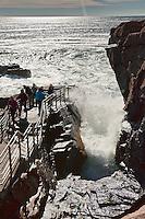 Thunder Hole, Acadia NP, Maine, ME, USA