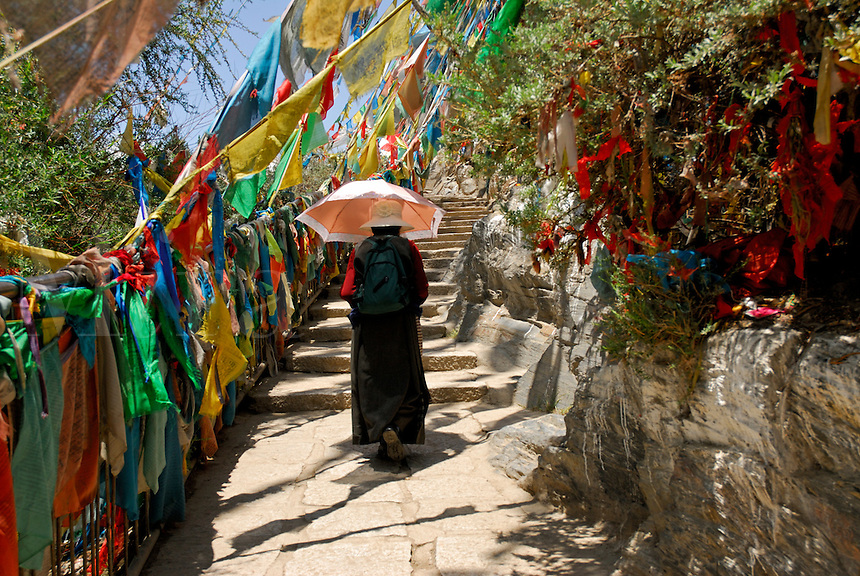 Buddhist pilgrim follows steps lined with prayer flags along the sacred Lingkhor circuit, which encircles the old city, on Chagpo Ri mountain, Lhasa, Tibet, China.