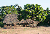 Mato Grosso State, Brazil. Xingu River. Aldeia Metuktire (Kayapo). Traditional house with thatched roof and wood stake walls
