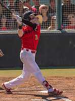 Harvard-Westlake Wolverines Pete Crow-Armstrong (21) bats during a High School baseball game on May 14, 2019 in Encino, California.  (Terry Jack/Four Seam Images)