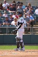 Somerset Patriots catcher Jason Lopez (15) during a game against the Hartford Yard Goats on September 12, 2021 at TD Bank Ballpark in Bridgewater, New Jersey.  (Mike Janes/Four Seam Images)