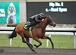 April 03, 2014: Hip 6  Hard Spun - Miss Del Gallo consigned by Kirkwood Stables worked 1/4 in 21:3.  Candice Chavez/ESW/CSM