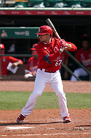St. Louis Cardinals Max Moroff (67) bats during a Major League Spring Training game against the Houston Astros on March 20, 2021 at Roger Dean Stadium in Jupiter, Florida.  (Mike Janes/Four Seam Images)