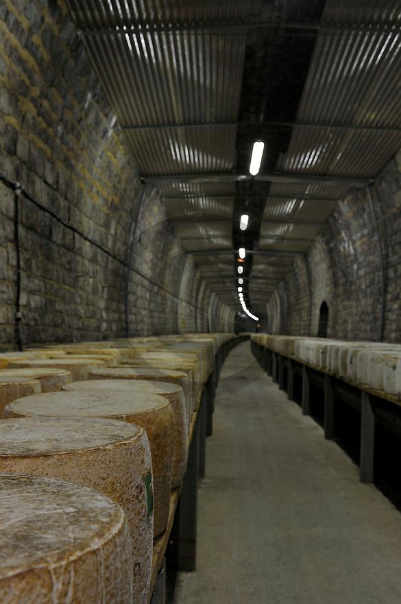 30/11/11 - SAINT PONCY - CANTAL - FRANCE - Affinage de fromages AOP CANTAL en tunnel pour la Fromageries des Monts du Cantal - Photo Jerome CHABANNE