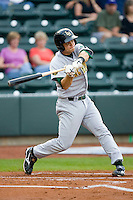Devin Mesoraco #36 of the Lynchburg Hillcats takes his swings against the Winston-Salem Dash at  BB&T Ballpark May 22, 2010, in Winston-Salem, North Carolina.  Photo by Brian Westerholt / Four Seam Images