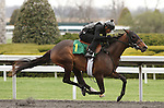 April 03, 2014: Hip 1 Giant's Causeway - Macarena Macarena consigned by Wavertree Stables worked 1/4 in 21:3.  Candice Chavez/ESW/CSM