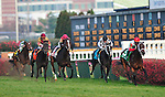 14 November 2009: Mary's Follies (red silks) with Kent Desormeaux up wins the G2 Mrs. Revere Stakes at Churchill Downs in Louisville, Kentucky.