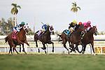 Malibu Way(9) with jockey Joe Bravo up winning at Gulfstream Park, Hallandale Beach Florida. 03-10-2012