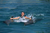 woman towed by, atlantic bottlenose dolphin, Tursiops truncatus, Puerto Plata, Dominican Republic, Caribbean, Atlantic (c)