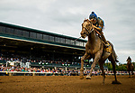 LEXINGTON, KY - OCTOBER 07: Free Drop Billy #9, ridden by Robby Albarado wins the Claiborne Breeders' Futurity  at Keeneland Race Course on October 07, 2017 in Lexington, Kentucky. (Photo by Alex Evers/Eclipse Sportswire/Getty Images)