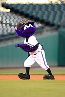 Louisville Bats mascot during a game against the Indianapolis Indians on April 19, 2013 at Louisville Slugger Field in Louisville, Kentucky.  Indianapolis defeated Louisville 4-1.  (Mike Janes/Four Seam Images)