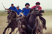 "The most famous Kyrgyz horse game is ""Kok boru"", also known as ""Ulak Tartysh"". The game is played with two teams of up to 12 people, who take their positions on opposite sides of the field.  At the signal, one of the team's riders should have time to ""grab"" the carcass and carry it into the ""gate"" of the enemy within the allotted time"