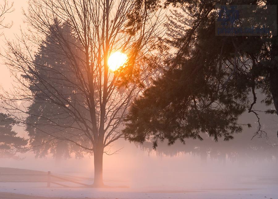 Jan. 19, 2015; Ground fog on the Burke Golf Course. (Photo by Matt Cashore/University of Notre Dame)