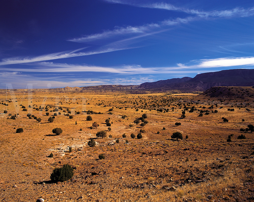 """Prairie / desert near """"Four Corners"""" (the junction of Utah, Arizona, Colorado and New Mexico), western United State"""