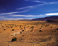 "Prairie / desert near ""Four Corners"" (the junction of Utah, Arizona, Colorado and New Mexico), western United State"