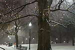 Evening snowfall in Boston Common, Boston, Massachusetts, USA
