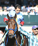 LEXINGTON, KY - OCTOBER 08:  #12 Mongolian Saturday wins the Woodford Presented by Keeneland Select at Keeneland on October 8, 2016 in Lexington, Kentucky. (Photo by Jessica Morgan/Eclipse Sportswire/Getty Images)