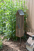 Butterfly House and birdhouse in garden next to fence