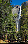 Yosemite Falls during Spring Flood, Western Approach Trail, Yosemite National Park