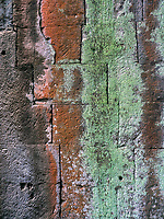 A Moss covered Stone Wall at Ta Prohm, Angkor, Siem Reap, Cambodia