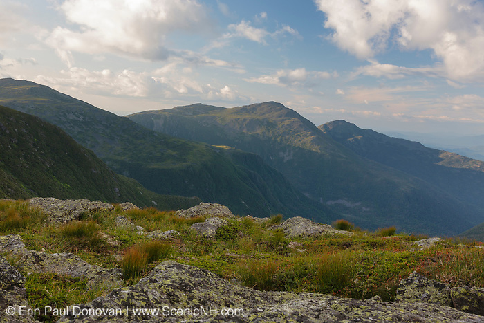 View across the Great Gulf Wilderness from along the Gulfside Trail (Appalachian Trail) in the White Mountains, New Hampshire USA during the summer months. Mount Adams(C), Mount Madison(R).