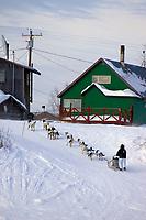 Melanie Gould runs on Yukon River into Kaltag Chkpt during 2006 Iditarod Western Alaska Winter