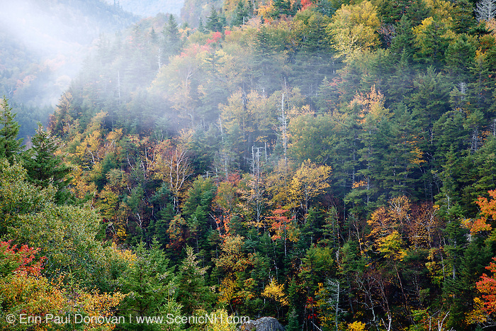 Autumn foliage on Mount Willard during the autumn months in Crawford Notch State Park of the White Mountain National Forest of New Hampshire.