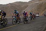 The chasing pack in the final 4km on Jais Mountain during Stage 5 of the 2021 UAE Tour running 170km from Fujairah to Jebel Jais, Ras Al Khaimah, UAE. 25th February 2021.  <br /> Picture: Eoin Clarke   Cyclefile<br /> <br /> All photos usage must carry mandatory copyright credit (© Cyclefile   Eoin Clarke)