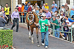 21 February 2010:  Starfish with Christopher DeCarlo wins the Ladies Turf  Sprint at Gulfstream Park in Hallandale Beach, FL.
