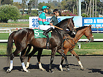 October 2, 2010.Zneyatta riden by Mike Smith in the post parae before winning The Lady's Secret Stakes at Hollywood Park, Inglewood, CA._Cynthia Lum/Eclipse Sportswire.com