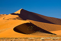 Namib Naukluft National Park, Namibia  While this is not the tallest of the dunes at Soussusvlei, it is one of the tallest dunes in the world.