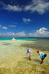 Saltwater fly fishing in Los Roques