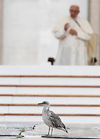 Un pulcino di gabbiano durante l'incontro di Papa Francesco, sullo sfondo, con gli appartenenti al Rinnovamento nello Spirito Santo in Piazza San Pietro, Citta' del Vaticano, 3 luglio 2015.<br /> A gull chick walks as Pope Francis, background, meets members of the Catholic Charismatic Renewal in St. Peter's Square at the Vatican, 3 July 2015.<br /> UPDATE IMAGES PRESS/Isabella Bonotto<br /> <br /> STRICTLY ONLY FOR EDITORIAL USE
