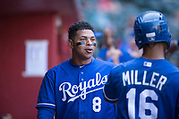 Xavier Fernandez (8), of the Kansas City Royals, talks to MJ Melendez (wearing Anderson Miller's #16 jersey) during an Instructional League game against the Arizona Diamondbacks at Chase Field on October 14, 2017 in Scottsdale, Arizona. (Zachary Lucy/Four Seam Images)