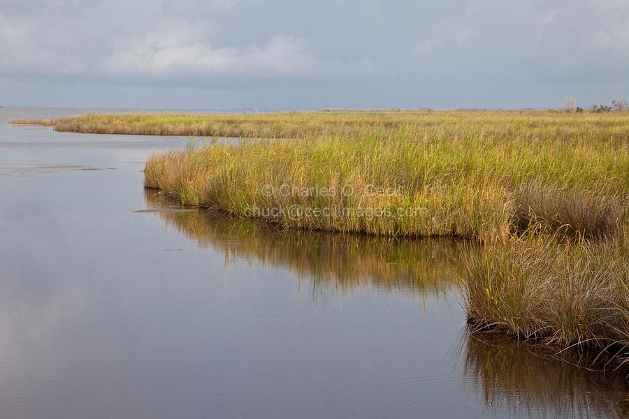 North Carolina Outer Banks, Currituck Sound.