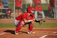 AZL Angels catcher Edwin Bisay (5) during a game against the AZL Giants Orange at Giants Baseball Complex on June 17, 2019 in Scottsdale, Arizona. AZL Giants Orange defeated AZL Angels 8-4. (Zachary Lucy/Four Seam Images)