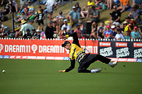 Finn Allen slips over during the Dream11 Super Smash T20 men's cricket final between Wellington Firebirds and Canterbury Kings at the Basin Reserve in Wellington, New Zealand on Saturday, 13 February 2021. Photo: Dave Lintott / lintottphoto.co.nz