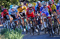 4th September 2020; Millau to Lavaur, France. Tour de France cycling tour, stage 7;  Guillaume Martin FRA - Cofidis - Tom Dumoulin NED - Team Jumbo - Visma CYCLISMEic