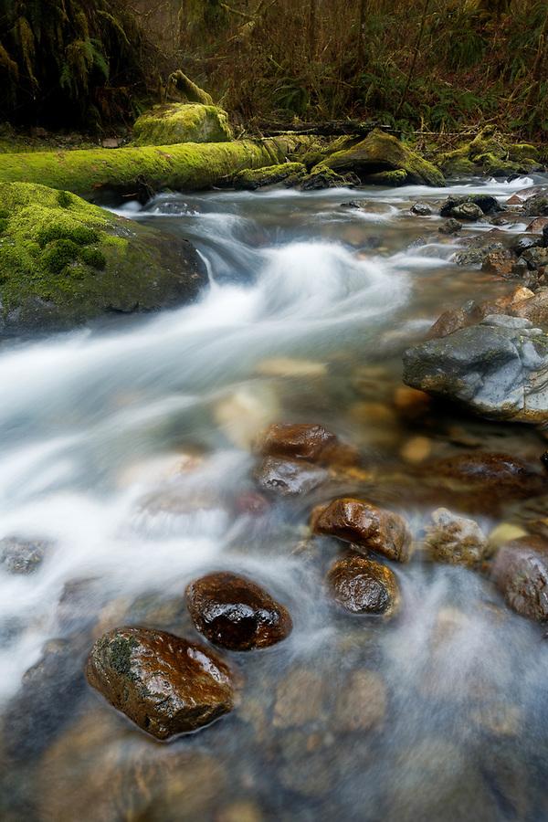 French Creek, mossy boulders and mossy log, Darrington, Snohomish County, Washington, USA