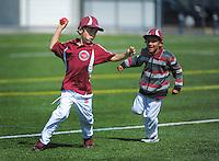 151205 Cricket - Easts Moreporks v Brooklyn Juniors
