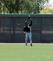 Caberea Weaver - Chicago White Sox 2019 extended spring training (Bill Mitchell)