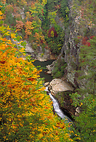 Tallulah Gorge in northeast Georgia, at 600 feet in depth, is one of the deepest and most spectacular gorges in the eastern United States. Aerial view of waterway surrounded by brilliant yellow and green fall foliage.