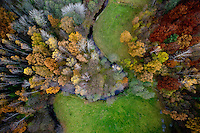 A river runs through a forest with the trees changing colour in Autumn in Kashubia.