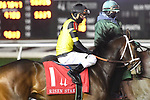 February 13, 2021: Starrininmydreams in the Risen Star Stakes at Fair Grounds Race Course in New Orleans, Louisiana. Parker Waters/Eclipse Sportswire/CSM